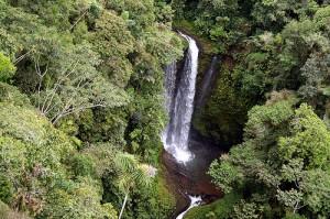 Madre Natura : cascata in Amazzonia